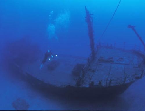 Stella Maru